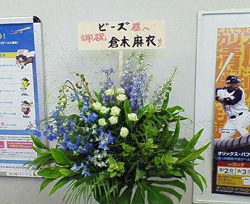mai_for_Bz.jpg